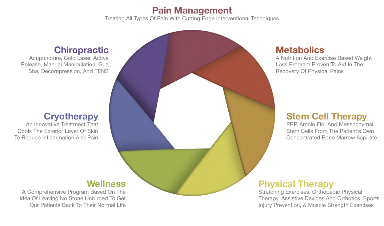 Wellness Venn Diagram